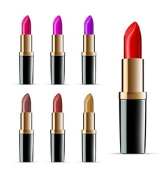 Set of lipsticks vector