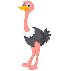 Cute ostrich cartoon vector