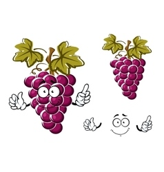Cartoon purple grape fruit character vector