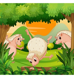 Three hedgehogs playing in the woods vector