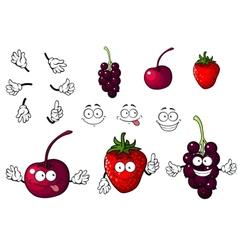 Cartoon cherry strawberry and blackberry vector