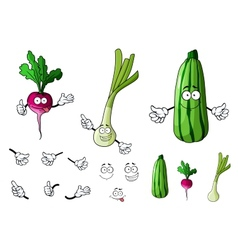 Radish zucchini and onion vegetables vector