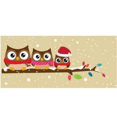 Owl family on the branch christmas banner vector