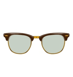 Classic brown sunglasses clubmaster vector