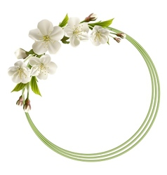 Spring background with white cherry flowers vector