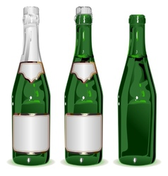 Set bottle of champagne vector