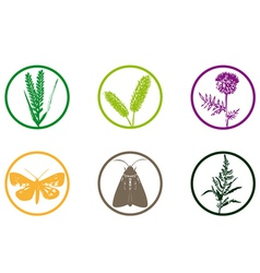 Plant weed icon vector