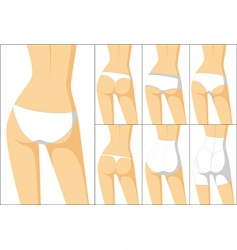 Female panties vector