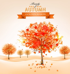Autumn background with colorful leaves and trees vector