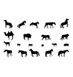 Silhouette of wild and domestic animals black vector
