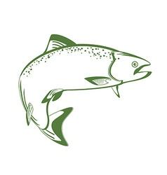 Salmon fish vector