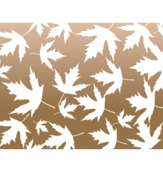 Maple pattern vector