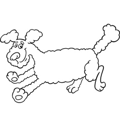 Running poodle cartoon for coloring vector