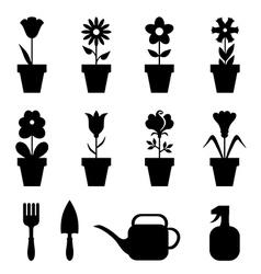 Pot flower set vector