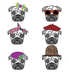 Pugs set of icons vector