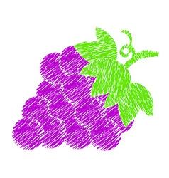 Grapes paint drawing vector