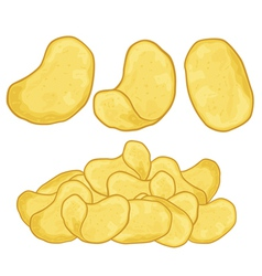 Potato chips vector