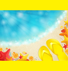 Beach with shells vector