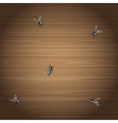 Flies on a desktop vector
