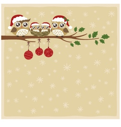 Owl christmas celebration vector