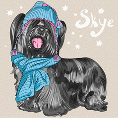 Cartoon hipster cute dog skye terrier vector