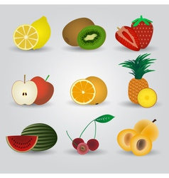Colorful fruits and half fruits icons eps10 vector