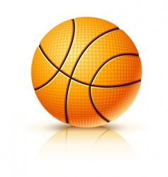 Ball for playing basketball game vector