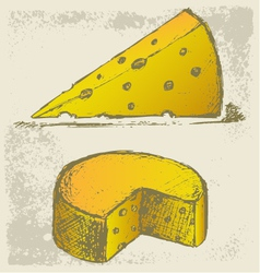 Piece cheese vector