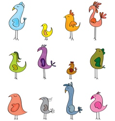 Little birds vector