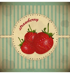 Ripe strawberry card vector