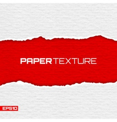 Realistic lacerated paper texture vector