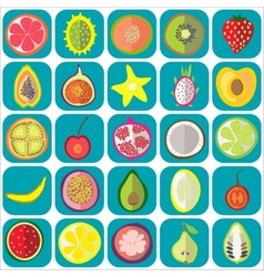 Fruit icons flat vector
