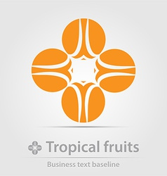 Tropical fruits business icon vector