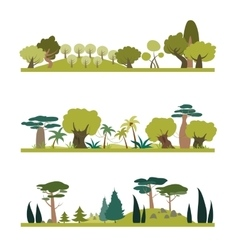 Set of different trees species vector