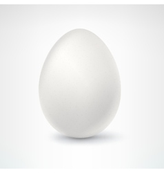Egg isolated on white background vector
