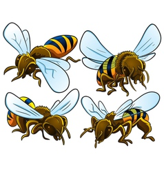 Bees collection vector