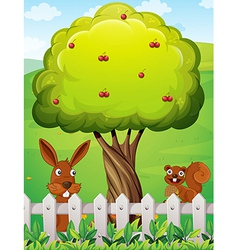 A rabbit and a squirrel near the tree vector