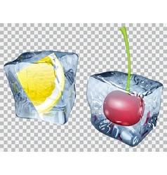 Transparent ice cubes with cherry and lemon vector