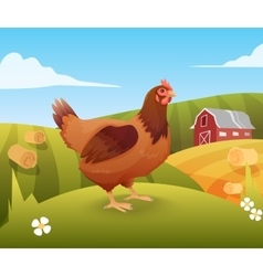 Hen standing on grass with farm on background vector
