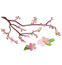 Branch of peach with rosy flowers vector