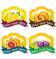 Fruit frames vector