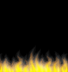 Burning fire flame on black background vector