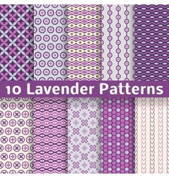 Lavender different seamless patterns vector
