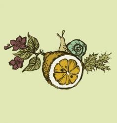 Snail on lemon vector