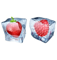 Ice cubes with strawberry and raspberry vector