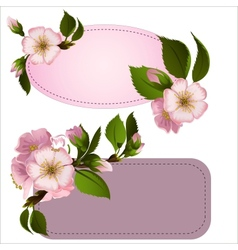 Tags with flowers vector