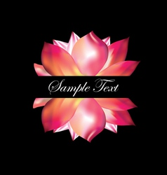 Pink lotus on black background vector