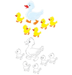 Duck and ducklings vector
