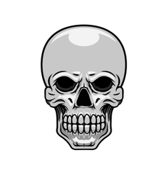Danger human or monster skull vector