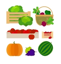 Vegetables and fruits farm baskets vector